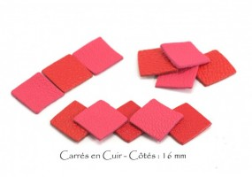 cuir_carres_16_Tons_Rouge_et_Rose.jpg