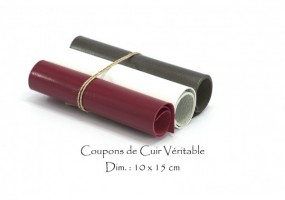 cuir_coupons_10x15_LVBG.jpg