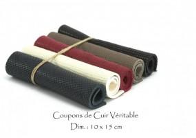 cuir_coupons_10x15_Lezard
